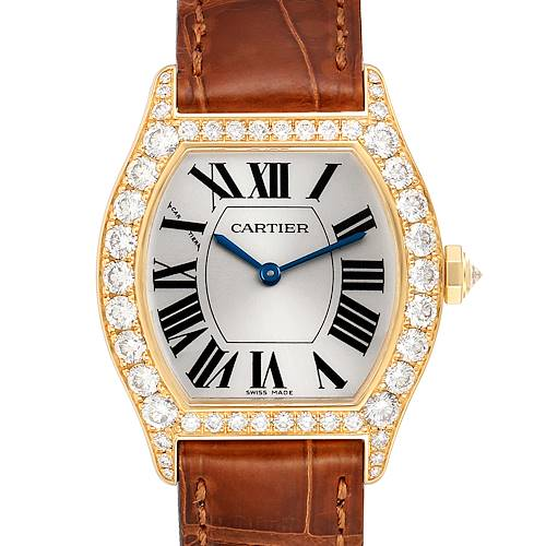 Photo of Cartier Tortue Yellow Gold Diamond Brown Strap Ladies Watch WA503751