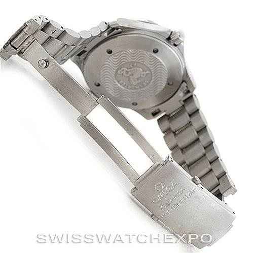 Omega Seamaster Gmt Great White Mens Watch 2538 20 00