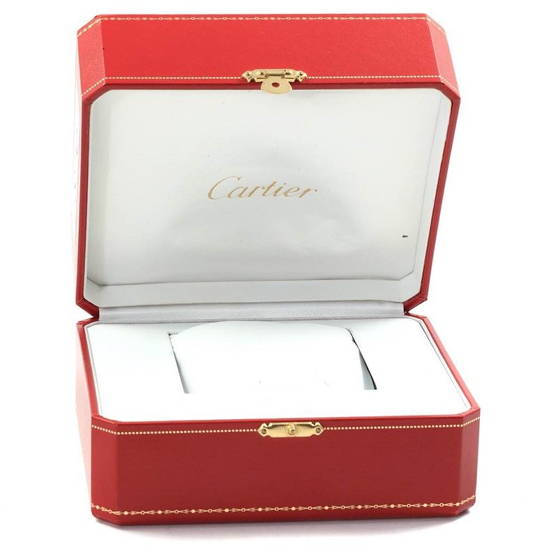 Cartier Santos 100 Silver Dial Steel Brown Strap Mens Watch W20073X8 SwissWatchExpo