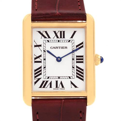 Photo of Cartier Tank Solo Yellow Gold Steel Brown Strap Mens Watch W1018855